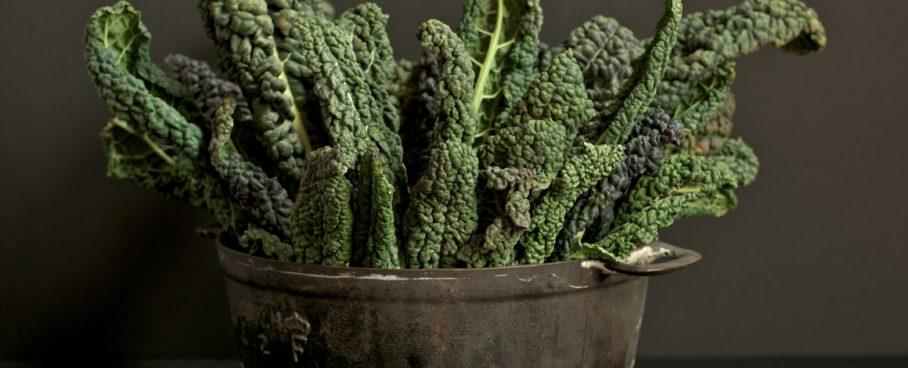 Kale. Che cavolo è?